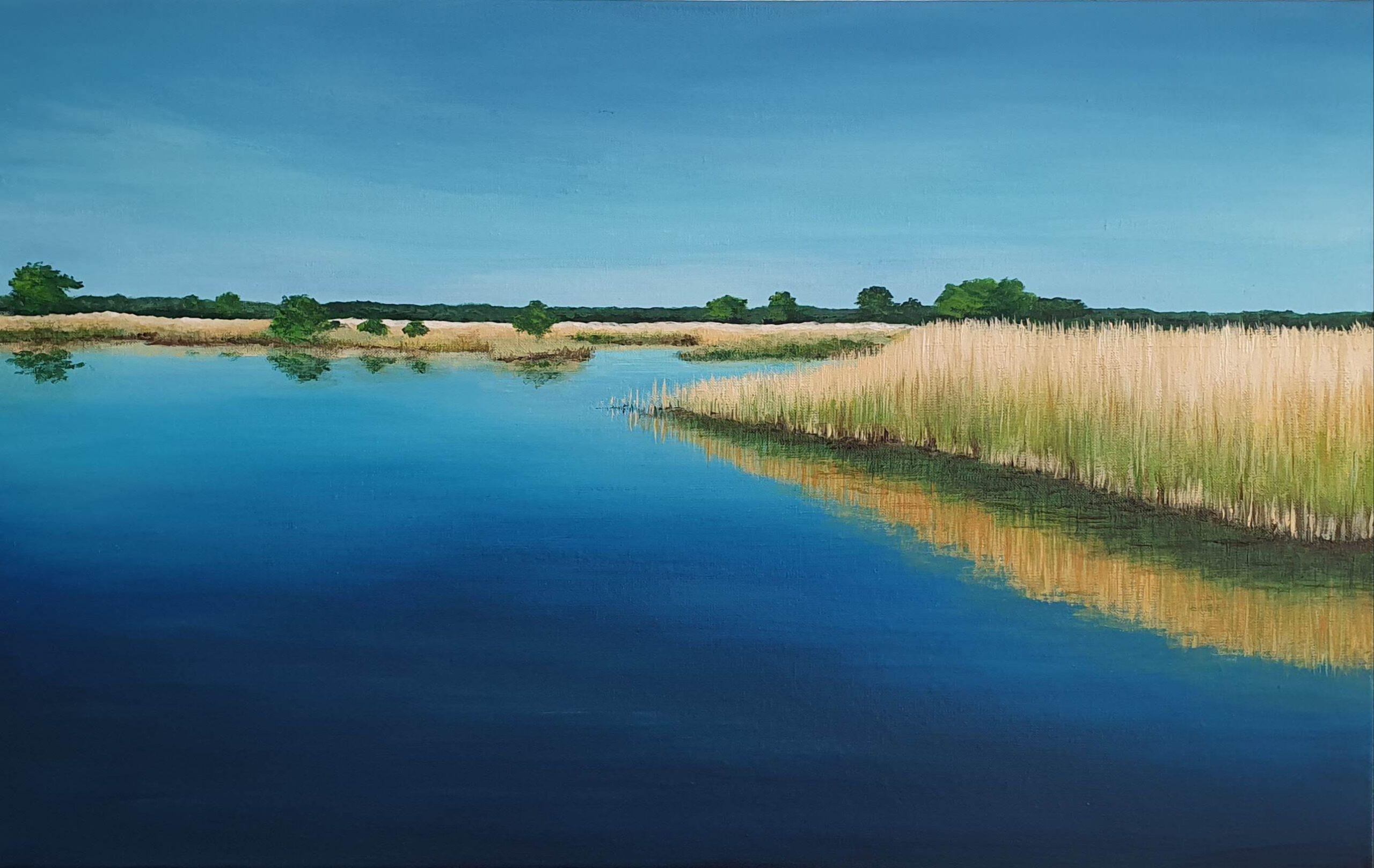 landschap schilderij van het zuidlaardermeer